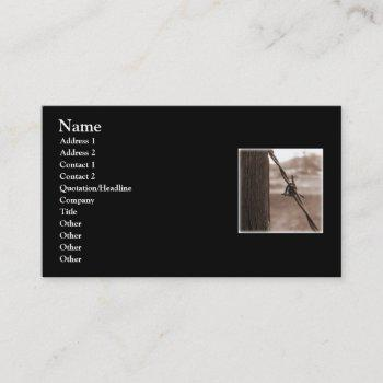 barbed wire business card