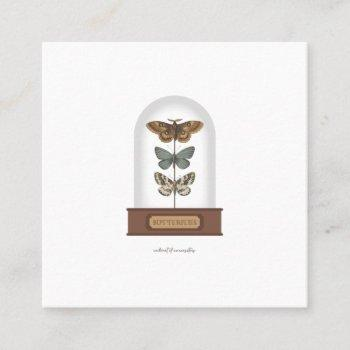butterflies featuring moths in a glass dome square business card