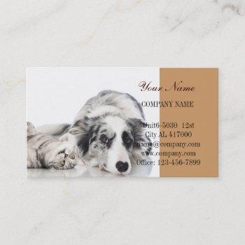 cute dog cat pet sitter animal sitter pet groomer business card