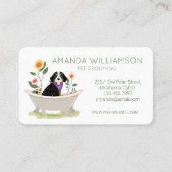 dog grooming bernese mountain dog in bathtub business card