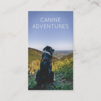 dog walker adventure walks and hikes business card