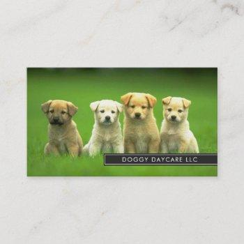 doggy daycare dog business card