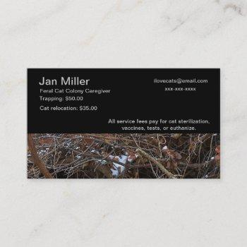 feral cat colony caregiver business card