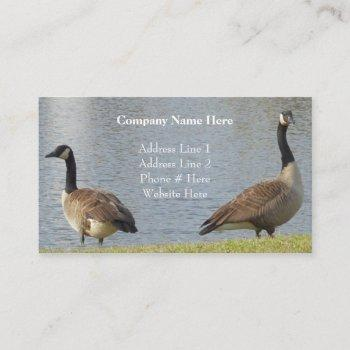 geese by pond business cards