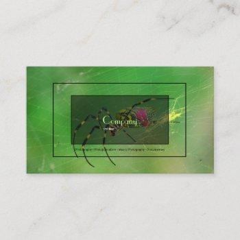 golden orb waver business card