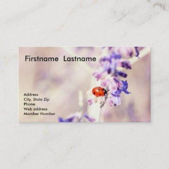 ladybug business card