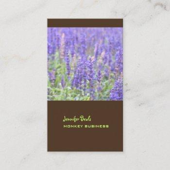 lavender field photograph + chocolate business card