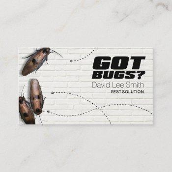 pest solution business card