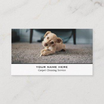 puppy on carpet, carpet cleaners, cleaning service business card
