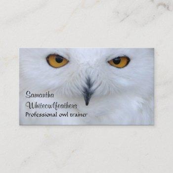 snowy owl close up photo business card