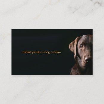 stylish pet care dog walker walking business card